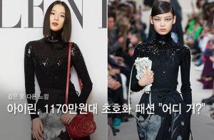 """모델 아이린, 1170만원대 초호화 패션 '깜짝'…""""어디 거길래?"""""""