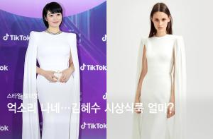 손에 든 클러치만 300만원대…김혜수 시상식룩 얼마?