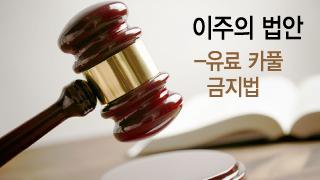 한국판 '붉은 깃발법', 카풀을 멈추고 택시를 살릴 수 있을까