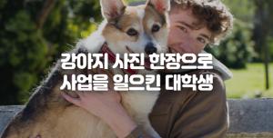 강아지 사진에 유머를 곁들이니 회사가 됐다