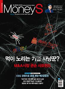 M&A 큰 손 사모펀드- 재무 주치의? 기업 사냥꾼?
