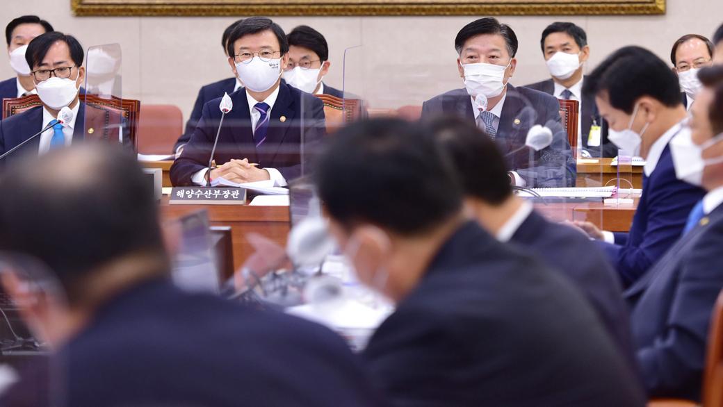 北 피격 공무원·중국어선 불법조업 등 2020 해수부 등 종합감사